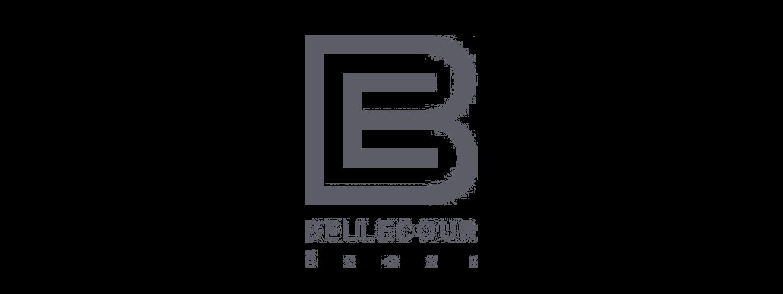 Bellecour-ecole-Lyon-logo
